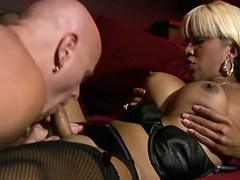 Busty beautiful tranny gets blowjob