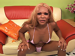 Big titty black shemale strokes her dick